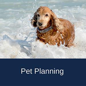 St. Louis Pet Planning
